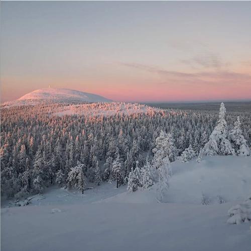 Kaamos Lapland